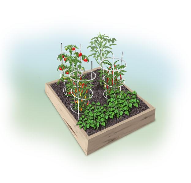 This Grandmother's Garden: Let's PLAN A GARDEN