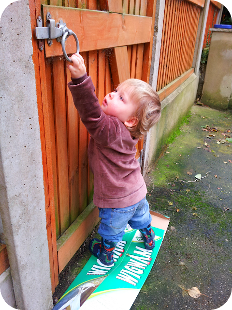 child opening gate, toddler opening gate