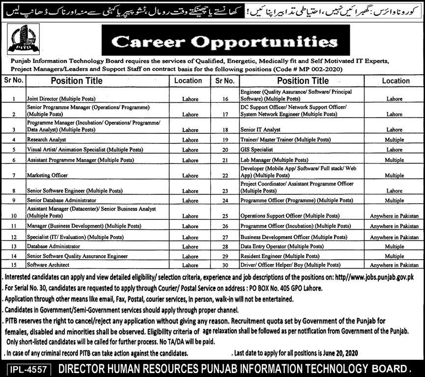 Punjab Information Technology Board Jobs June 2020