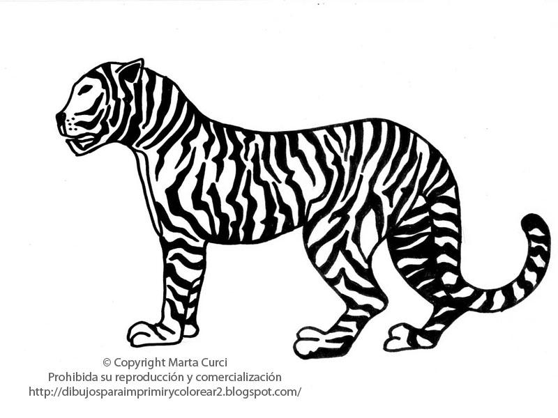 Dibujos De Caras De Tigres Para Colorear: Caras Para Colorear E Imprimir De Tigres
