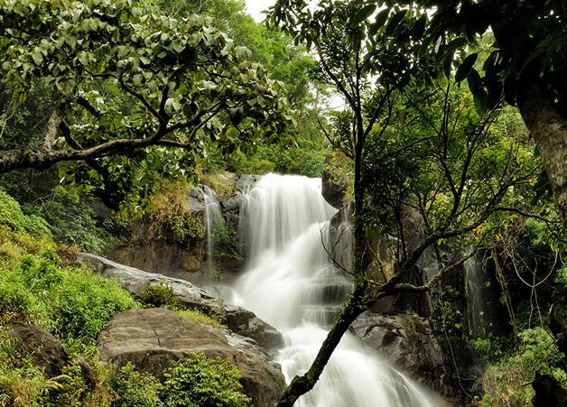 Chethalayam waterfalls wayanad