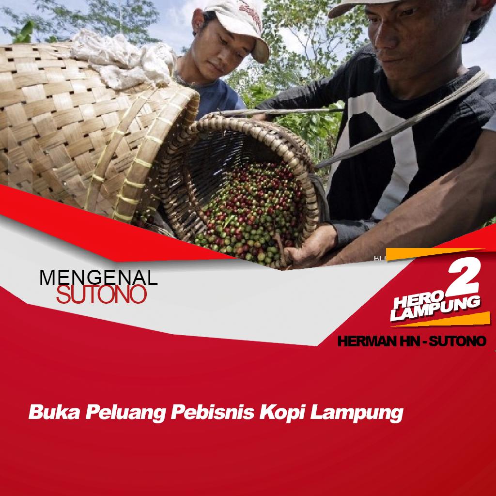 """Sutono : """"Program Usaha Peluang Bisnis Kopi Di Lampung"""""""