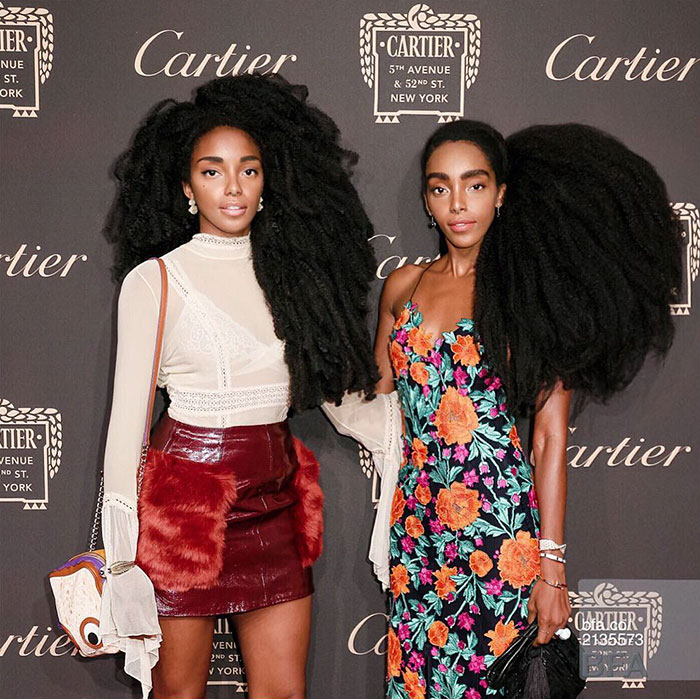 Now, whatever Cipriana and TK Wonder do - These Twin Sisters Were Ashamed Of Their Incredible Hair, But Now They Became Famous For It