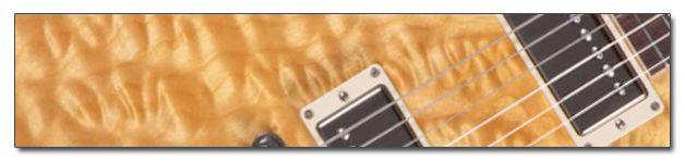 http://www.manualguitarraelectrica.com/p/tipos-maderas-guitarra-electrica.html