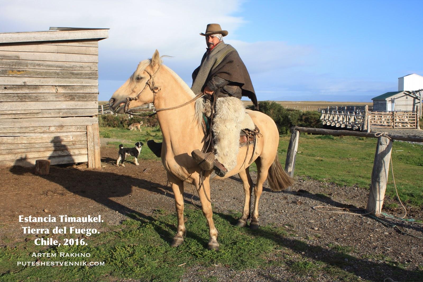 Гаучо в шляпе верхом на лошади