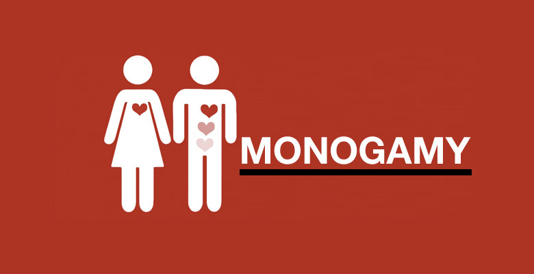 polygamy better than monogamy