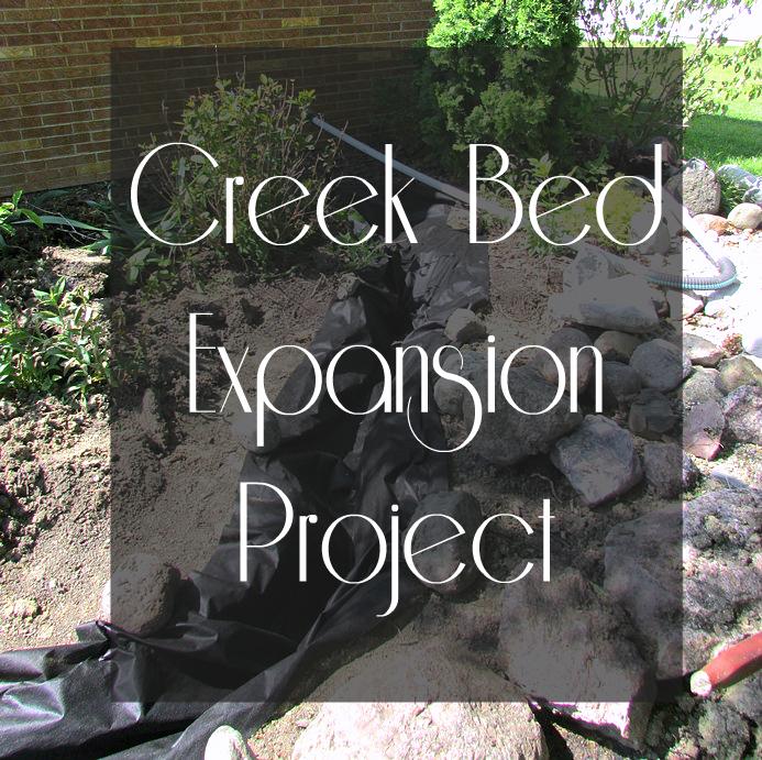 Creek Bed DIY