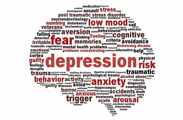 The_causes_of_depression1