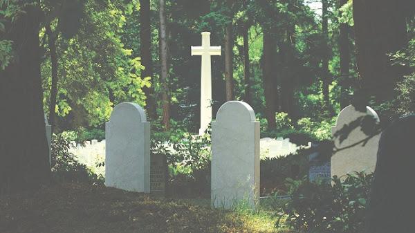 Ο λόγος που όλα τα νεκροταφεία είναι γεμάτα κυπαρίσσια
