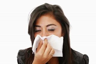 7 makanan Alami buat Pencegah Flu Secara Lebih Efektif