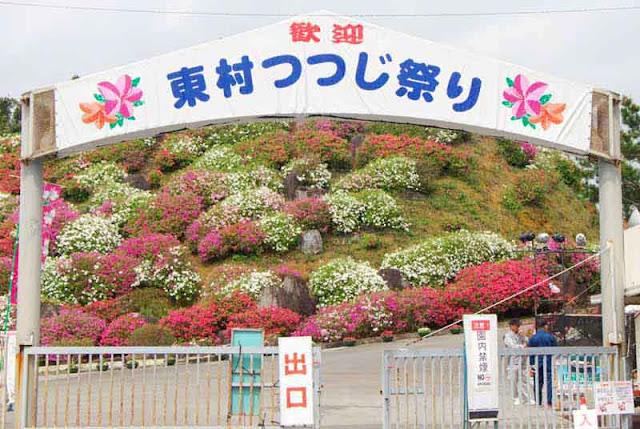 entrance, gate, Higashi Azelea Matsuri, flowers