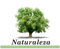 http://www.curiosidades2020.com/search/label/Naturaleza