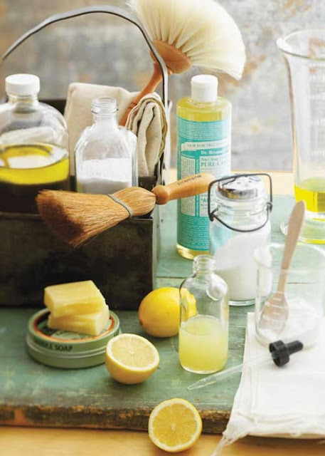 42 Eco Friendly All Natural Cleaning Products You Can Make