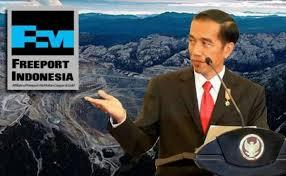 Kemajuan Pengelolaan SDA dan Lingkungan Era Presiden Jokowi
