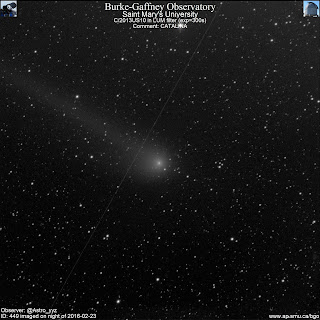 luminance photograph of comet Catalina