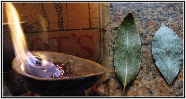 Just Burn A Bay Leaf In Your Home