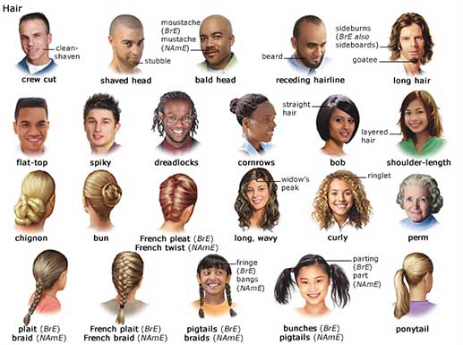 Hair Cutting Vocabulary. Hair. Get Free Printable Hairstyle Pictures
