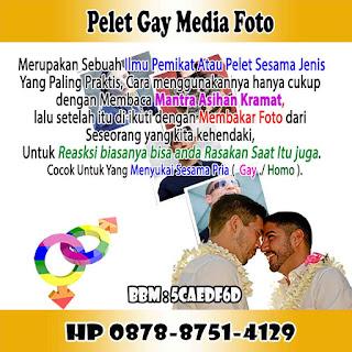 Pelet Gay Media Foto