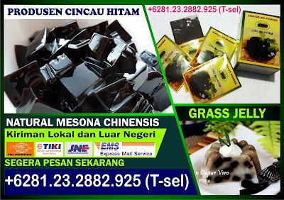 +6281.232.882.925, Cincau Hitam Bubuk, Mesona Chinensis Grass Jelly, Mesona Chinensis Extract
