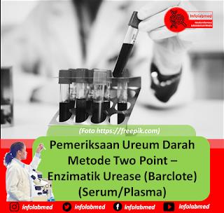 pemeriksaan ureum,pemeriksaan ureum pdf,pemeriksaan ureum metode enzimatik,pemeriksaan ureum dalam darah,pemeriksaan ureum untuk apa,pemeriksaan ureum metode kolorimetri,pemeriksaan ureum metode berthelot,pemeriksaan ureum kreatinin harus puasa,pemeriksaan ureum kreatinin adalah,pemeriksaan ureum kreatinin untuk apa,pemeriksaan ureum kreatinin pdf,pemeriksaan ureum untuk,pemeriksaan ureum urine,pemeriksaan ureum dan kreatinin untuk apa,pemeriksaan ureum serum,pemeriksaan ureum kreatinin pada diare,pemeriksaan ureum kreatinin puasa,jurnal pemeriksaan ureum pdf,laporan pemeriksaan ureum,tujuan pemeriksaan ureum,prinsip pemeriksaan ureum,pemeriksaan ureum adalah,pemeriksaan urea adalah,fungsi pemeriksaan ureum adalah,arti pemeriksaan ureum,pemeriksaan ureum darah adalah,pemeriksaan kadar ureum adalah,pemeriksaan ureum bun,pemeriksaan urea breath test,pemeriksaan urea breath test adalah,pemeriksaan blood urea nitrogen,biaya pemeriksaan ureum kreatinin,pemeriksaan bun urea,pemeriksaan ureum kreatinin,pemeriksaan ureum clearance,cara pemeriksaan ureum pdf,pemeriksaan urea clearance,indikasi pemeriksaan ureum kreatinin,cara pemeriksaan ureum kreatinin,cara pemeriksaan ureum,pemeriksaan ureum dan kreatinin,pemeriksaan ureum darah,pemeriksaan ureum dan kreatinin pdf,pemeriksaan urea darah,pemeriksaan urea dan kreatinin,pemeriksaan urea darah pdf,pemeriksaan urea dalam darah,pemeriksaan urea dalam urin,pemeriksaan urea dalam serum,tujuan pemeriksaan ureum dan kreatinin,tujuan pemeriksaan ureum darah,laporan pemeriksaan ureum darah,prinsip pemeriksaan ureum dan kreatinin,cara pemeriksaan ureum dan kreatinin,laporan pemeriksaan ureum dan kreatinin,pemeriksaan laboratorium ureum dan kreatinin,pemeriksaan kadar ureum dan kreatinin,sop pemeriksaan ureum dan kreatinin