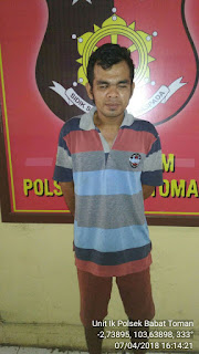 Alan DPO Kasus Pencurian Sapi Diringkus Polsek Babat Toman