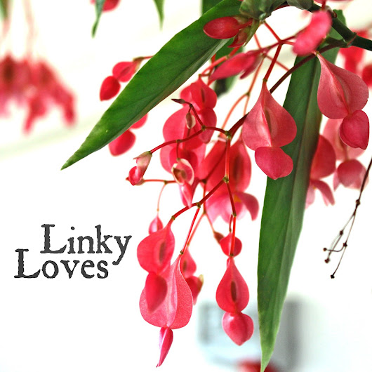 LINKY LOVES...