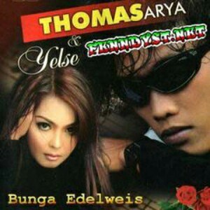 Thomas Arya - Bunga Edelweis (feat. Yelse) 2012 Album cover