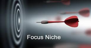 cara memilih niche blog