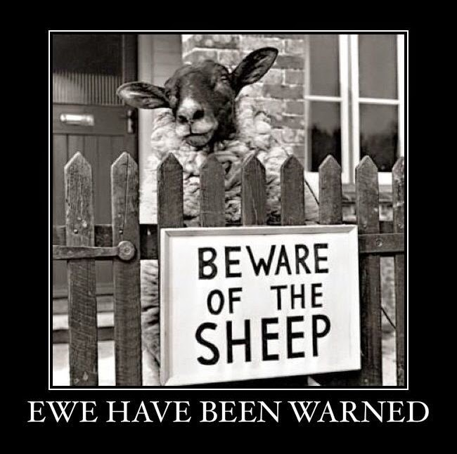 Beware of the sheep.  Ewe have been warned pun joke picture
