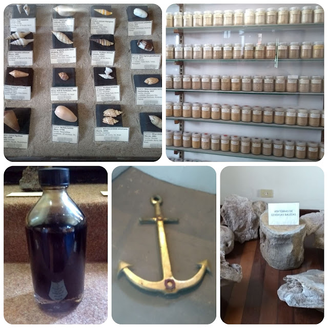 Museu de Pesca - Santos - SP