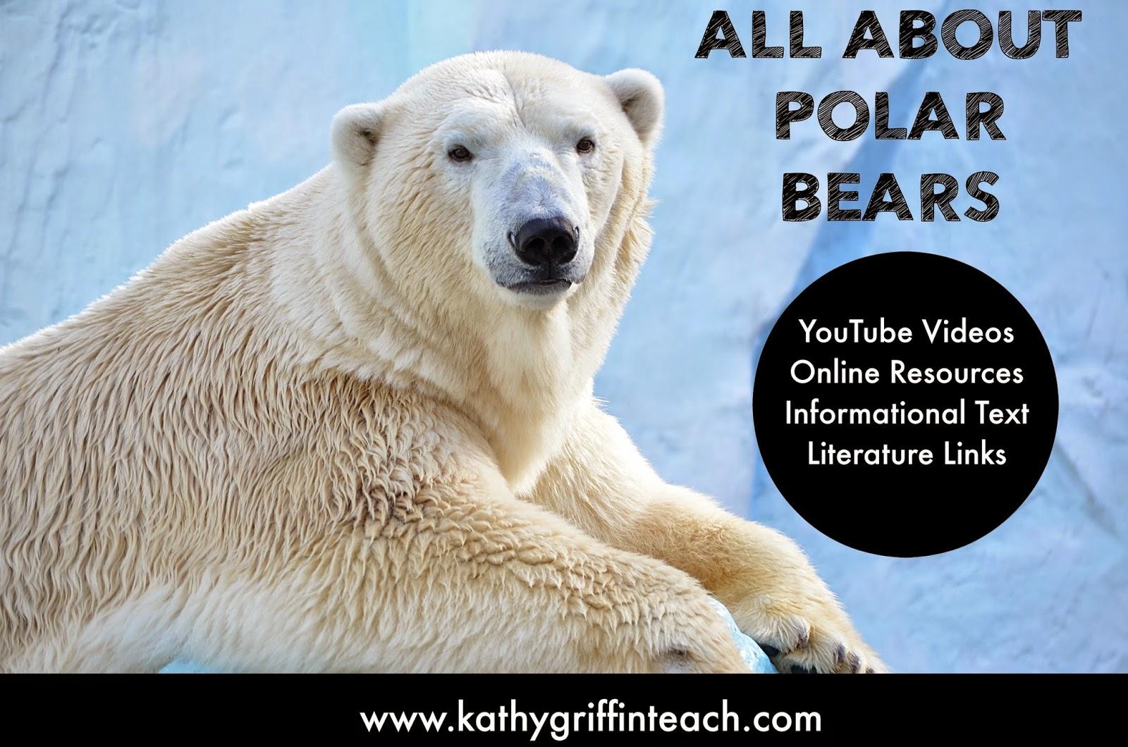 Kathy Griffin S Teaching Strategies Polar Bear Youtube