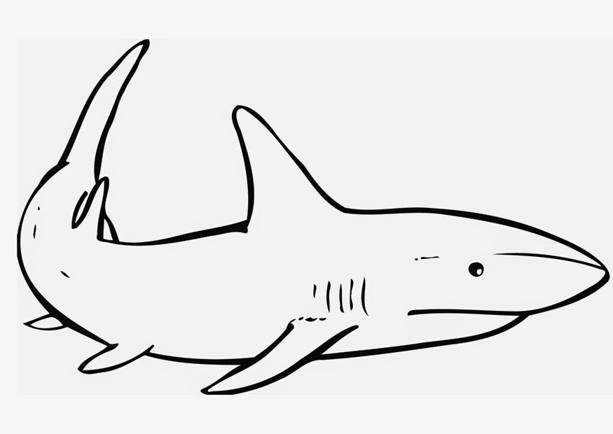 Free Printable Shark Coloring Pages Desktop HD