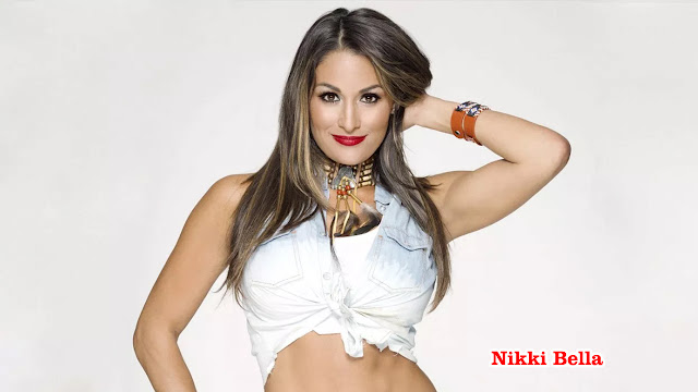 Download Nikki Bella Hd Wallpapers 2019
