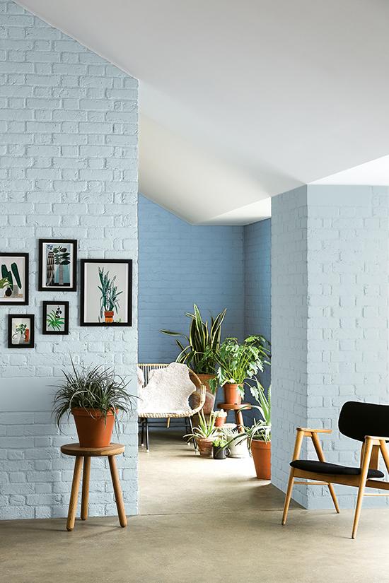 tintas coral, colour futures, parede colorida, sala, mural de quadros