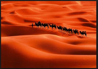 INI ALASAN DIPILIHNYA JAZIRAH ARAB SEBAGAI TEMPAT TUMBUH DAN BERKEMBANGNYA AGAMA ISLAM....