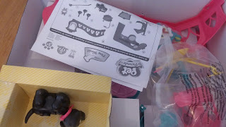 Inside the Pet Parade playset box