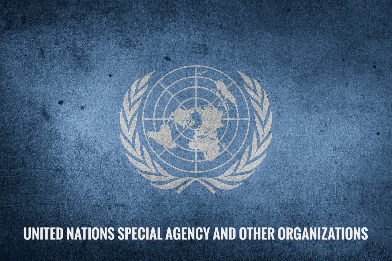 United Nations special agency and other organizations