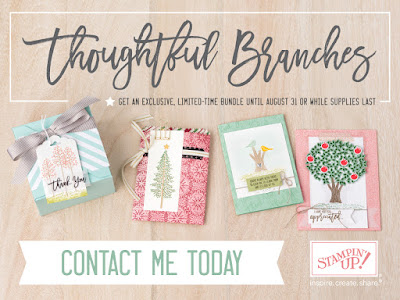 Stampin' Up! Thoughtful Branches August Special Bundle midnightcrafting.com