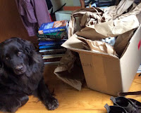 Shep inspecting the newly delivered copies of The Other Side of Hope (I assume Trublanche is the office manager)