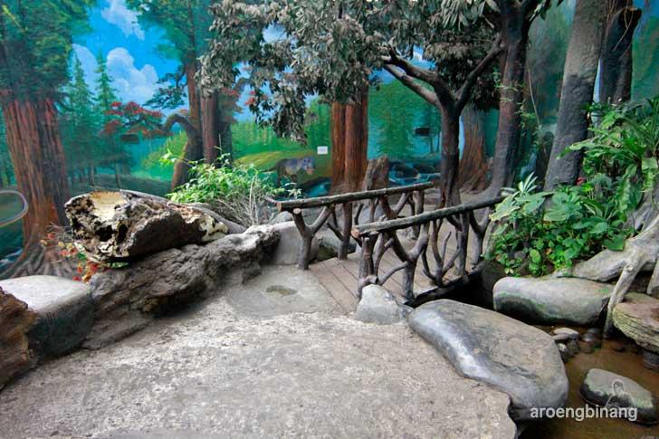taman akuarium air tawar tmii