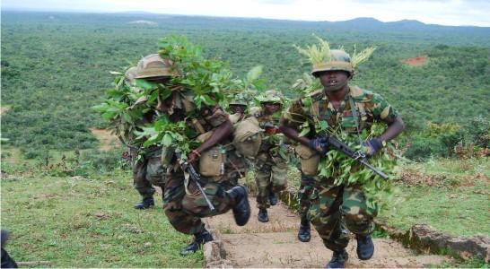 Sambisa Forest To Serve As Training Ground For Army