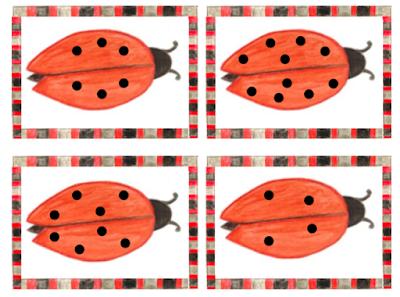 Nutze die kleinen Käferkarten zum Erklären von Ergänzungsaufgaben, zum Verdoppeln, Halbieren, zum Aufgaben schreiben oder einfach für die sprachliche Vertiefung vom Fachwortschatz für Schüler mit Deutsch als Fremdsprache.