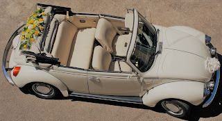 maggiolone beetle cabrio