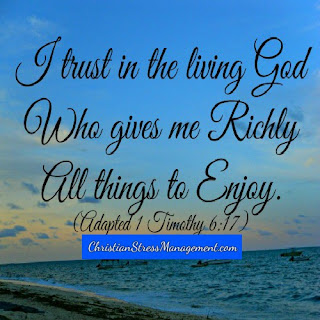 I trust in the living God Who gives me richly all things to enjoy. (Adapted 1 Timothy 6:17)