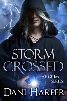 Storm Crossed, paranormal romance, fae, cover, Dani Harper