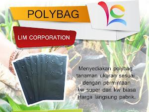 Bertanam Dalam Polybag, Hiasan Penuh Manfaat