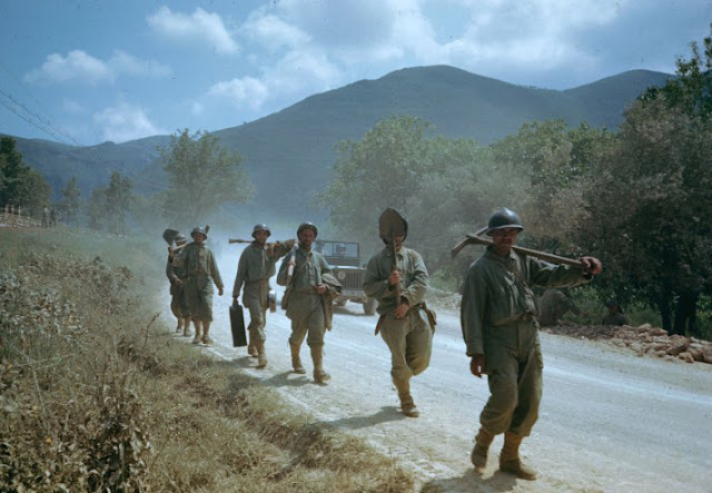 the role of the italian troops in the 20 month mediterranean italian campaign Essay examples search essay  italian campaign essay examples 3 total results  the role of the italian troops in the 20-month mediterranean italian campaign.
