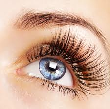 images Those Luxurious Lashes...Eyelashes hair growth
