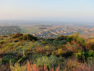 Looking south toward Azusa from Garica Trail