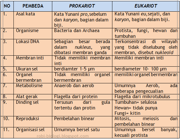 Perbedaan Sel Prokariot Dan Sel Eukariot
